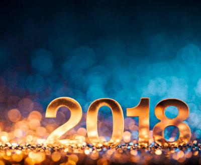 Новый 2018 Год Желтой Собаки